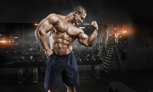 4 Of The Best Sources Of Protein To Aid In Muscle Growth