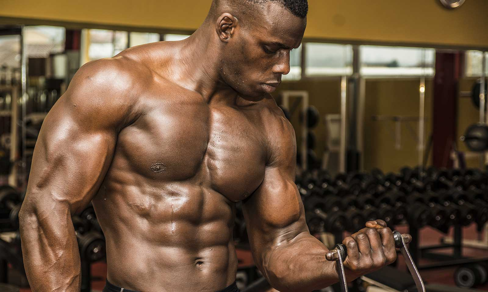 The Ultimate Recovery Stack: Creatine, Glutamine, And BCAA's