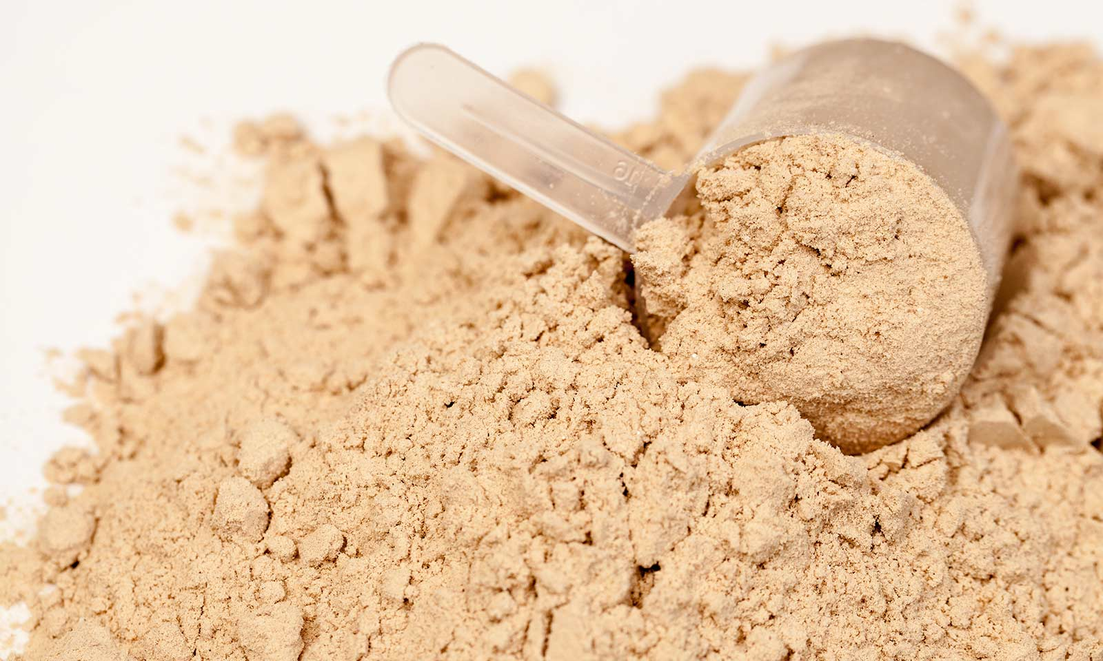 6-things-to-look-for-when-selecting-a-protein-supplement
