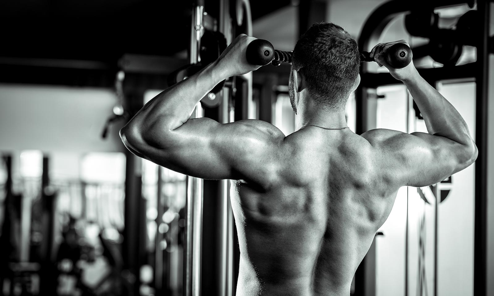 seven-reasons-why-your-gains-have-stalled