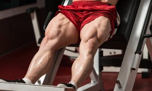 tips-for-strong-and-powerful-legs