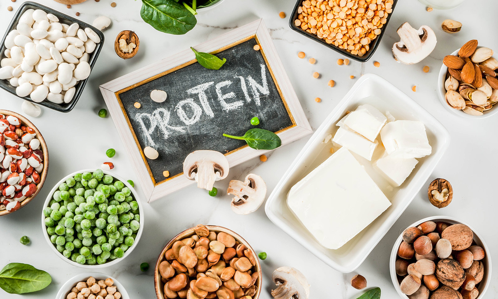 a-simple-introduction-to-protein-for-beginners