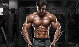 your-ultimate-guide-on-building-strength-and-size