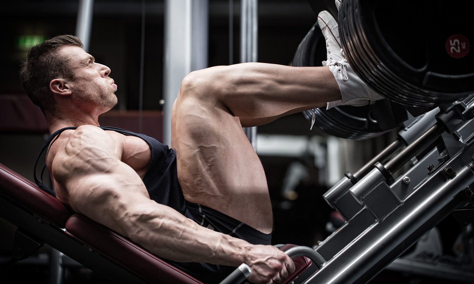your-definitive-guide-to-leg-dy-training